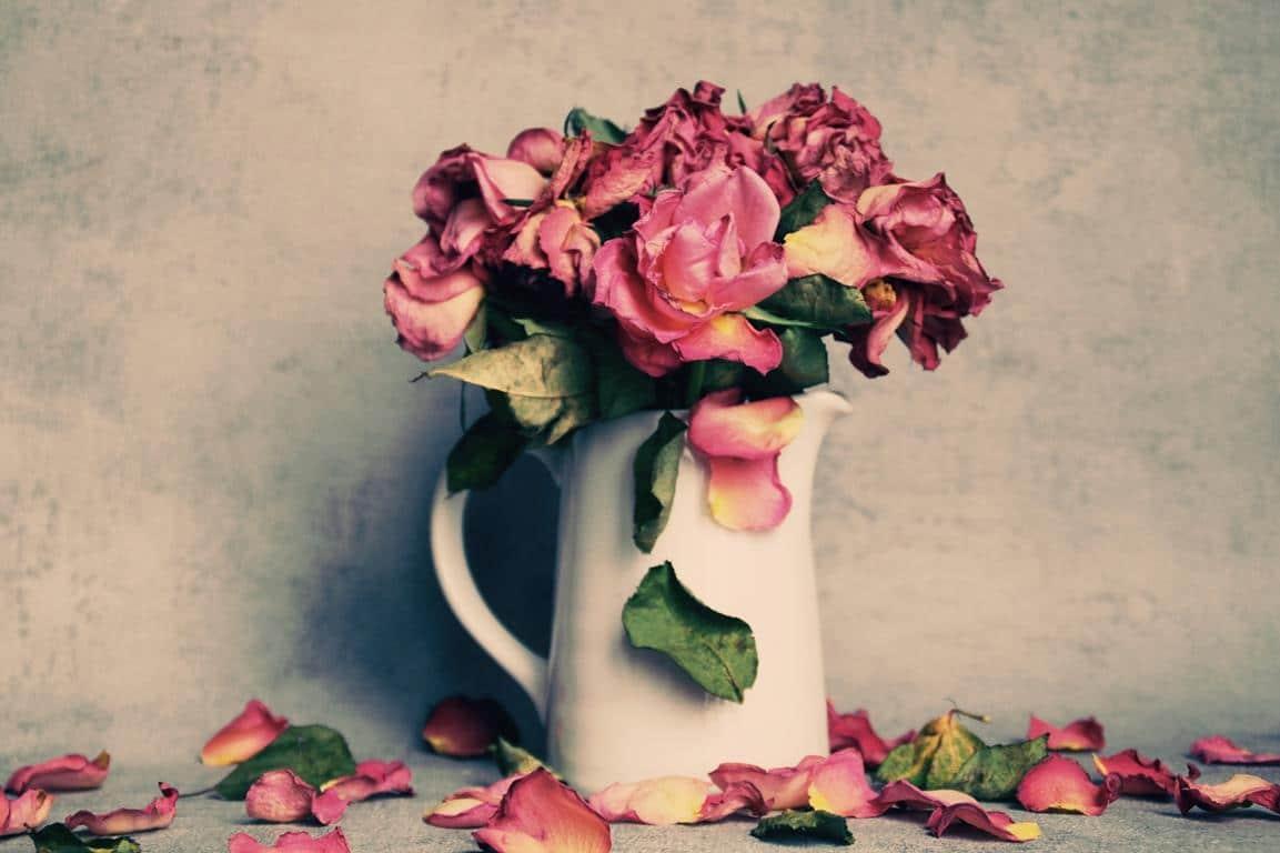 Flower line art Stockvektoren, lizenzfreie Flower line art Illustrationen -  Seite 71   Depositphotos®