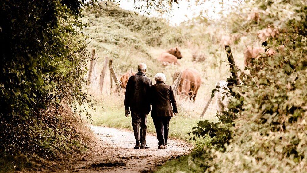 Geborgenheit als die wichtigste Eigenschaft bei der Partnersuche. Sie legt den Grundstein für Vertrauen, Offenheit und schließlich den Start in einer glückliche Beziehung. Bild: https://pixabay.com/de/photos/paar-senioren-rentner-alter-2914879/
